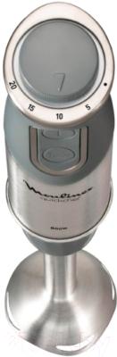 Блендер погружной Moulinex DD65CD32