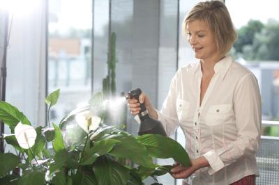 Опрыскиватель садовый Gardena Premium 00806-20