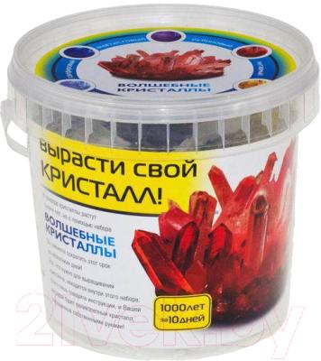 Набор для выращивания кристаллов КАРРАС Волшебные кристаллы (006)