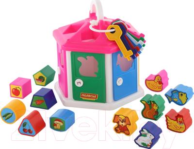Развивающая игрушка Полесье Логический домик / 6196 (в сеточке)