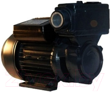 Самовсасывающий насос IBO WZI 250