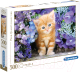 Пазл Clementoni Рыжий котенок в цветах 30415 (500эл) -