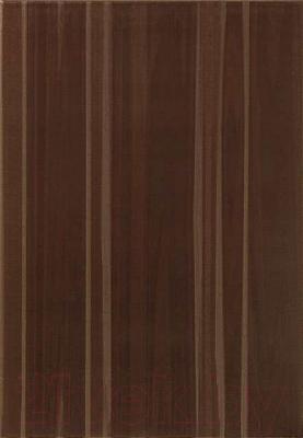 Плитка Tubadzin Cado Braz (250x360)