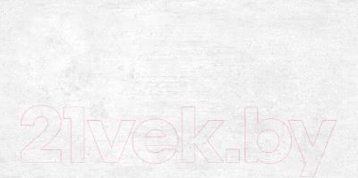 Плитка AltaCera Beton Gray WT9BTN00 (249x500)