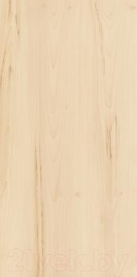 Плитка Italon Элемент Ачеро (600x1200)
