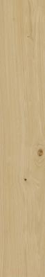 Плитка Italon Элемент Фаджио (200x1200)