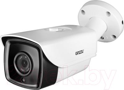 IP-камера Ginzzu HIB-4061O