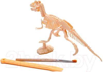 Набор для творчества Bradex Юный археолог DE 0264 (бронтозавр)