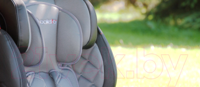 Автокресло Coletto Sportivo Isofix 2017 (черный)