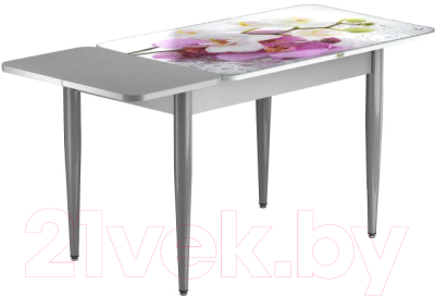 Обеденный стол Васанти Плюс ПРФ 110/153x70/1Р/ОА (алюминий/94)