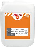 Грунтовка Alpina Expert Grund-Konzentrat (10л) -