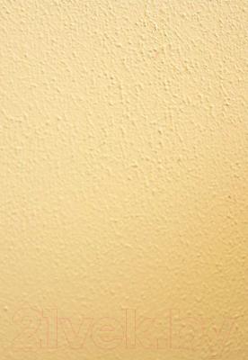 Краска декоративная Alpina Expert Fakturfarbe. База 3 (14кг)
