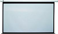 Проекционный экран Classic Solution Lyra 242x142 (E 234x132/9 MW-S0/W) -