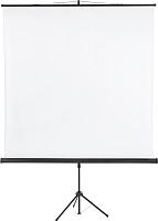 Проекционный экран Classic Solution Libra 220x220 (T 220x220/1 MW-SS/B) -
