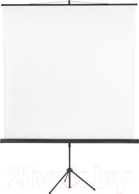 Проекционный экран Classic Solution Libra 220x220 (T 220x220/1 MW-SS/B)