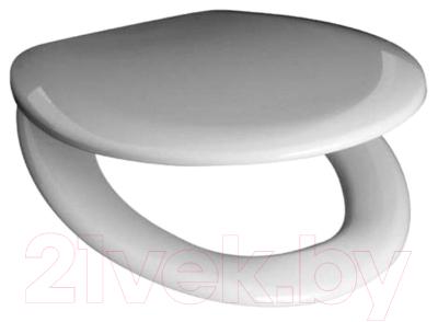 Сиденье для унитаза Roca Mateo ZRU9302822