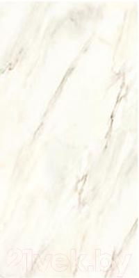 Декоративная плитка Roca Calacatta BL (300x600)