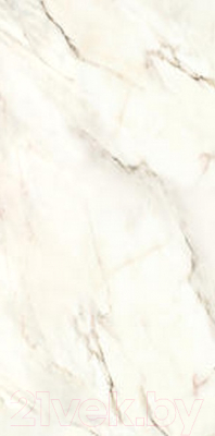 Плитка Roca Calacatta BL R (300x600)
