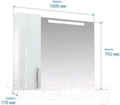 Шкаф с зеркалом для ванной Triton Кристи 100 (003.42.1000.102.01.01.R)