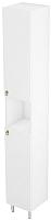 Шкаф-пенал для ванной Triton Реймс 30 (014.11.0300.101.01.01.R) -