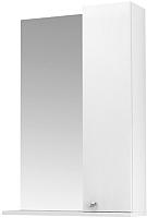 Шкаф с зеркалом для ванной Triton Локо 60 (013.42.0600.101.01.01.R) -