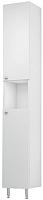 Шкаф-пенал для ванной Triton Локо 30 (013.11.0300.101.01.01.R) -