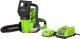 Электропила цепная Greenworks G24CS25K2 (2000007VA) -