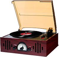 Проигрыватель виниловых пластинок iON TRIO LP (с радио) -