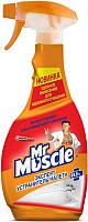 Чистящее средство для ванной комнаты Mr. Muscle Эксперт устранитель налета (500мл) -