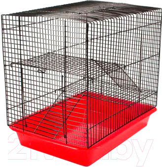 Купить Клетка для грызунов Eco, 4236, Китай, зависит от партии поставки