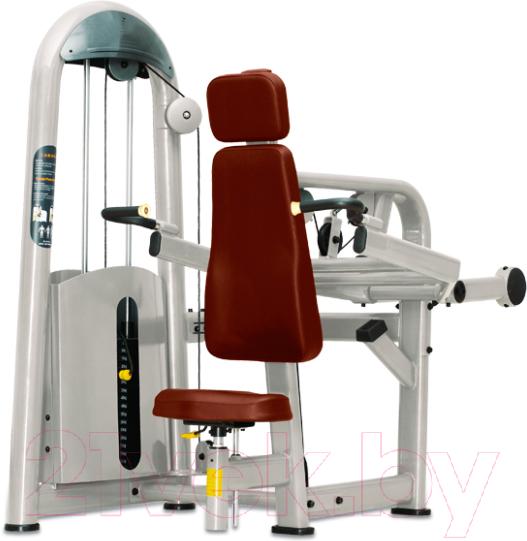 Купить Силовой тренажер Bronze Gym, D-007_C, Китай