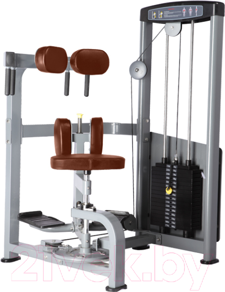 Купить Силовой тренажер Bronze Gym, D-011_C, Китай
