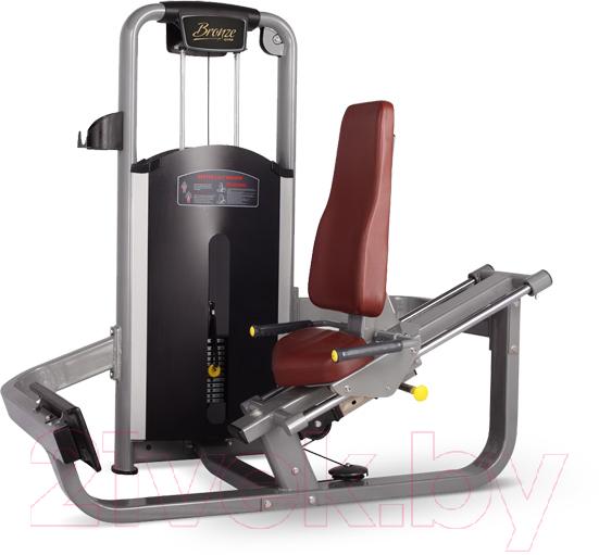 Купить Силовой тренажер Bronze Gym, MV-017_C, Китай