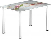 Обеденный стол Васанти Плюс ПРФ 120x80 (белый/57) -