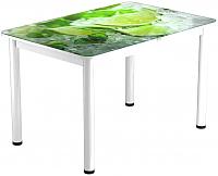 Обеденный стол Васанти Плюс ПРФ 100x60/3/ОБ (белый/55) -