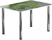 Обеденный стол Васанти Плюс ПРФ 100x60 (хром/55) -