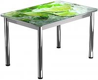 Обеденный стол Васанти Плюс ПРФ 110x70/3/ОА (хром/55) -