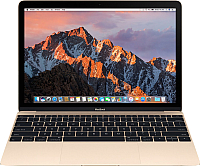 Ноутбук Apple MacBook (MNYK2RU/A) -