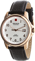 Часы наручные мужские Swiss Military Hanowa 06-4141.2.09.001 -