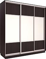 Шкаф Евва 176 VS.01 / АЭП ШК.3 03 (венге/серебро) -
