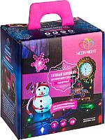 Набор светодиодных украшений Neon-Night Подарочный 500-069 (мультиколор) -