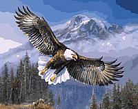Картина по номерам Picasso Дух свободы (PC4050325) -