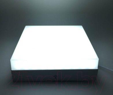 Точечный светильник Truenergy Квадрат 12W 4000K 10164 (с рассеивателем)