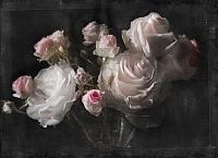 Фотообои Komar Eternity 4-876 (254x184) -