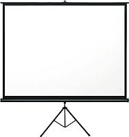 Проекционный экран Seemax Stable CTP120VWM (244x186) -