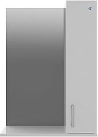 Шкаф с зеркалом для ванной АВН Эко+ 50 / 13.35 (3) -