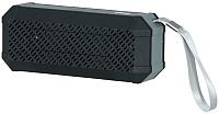 Портативная колонка Ritmix SP-260B (черный) -