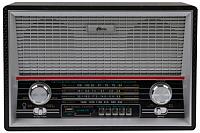Радиоприемник Ritmix RPR-101 (черный) -