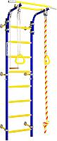 Детский спортивный комплекс Romana Next 1 ДСКМ-2С-8.06.Г1.490.18-24 (синяя слива) -