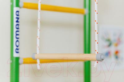 Детский спортивный комплекс Romana Next 1 ДСКМ-2С-8.06.Г1.490.18-24 (синяя слива)